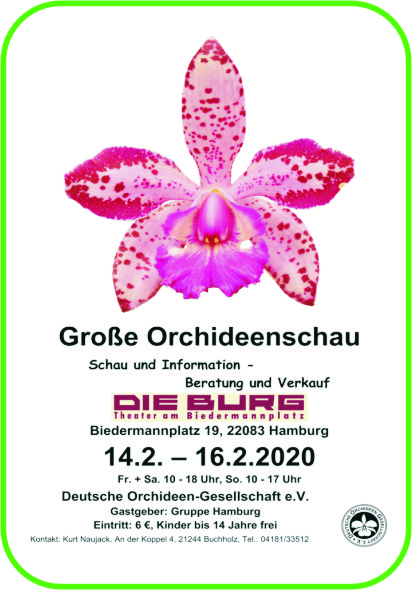 Orchideenschau Hamburg 2020
